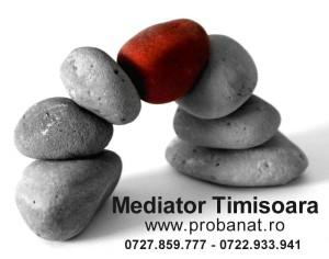 mediator timisoara avantaje mediere site nou