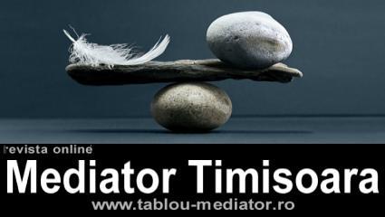 revista Mediator Timisoara